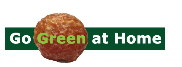 Find Go Green at Home at the Eco Expo