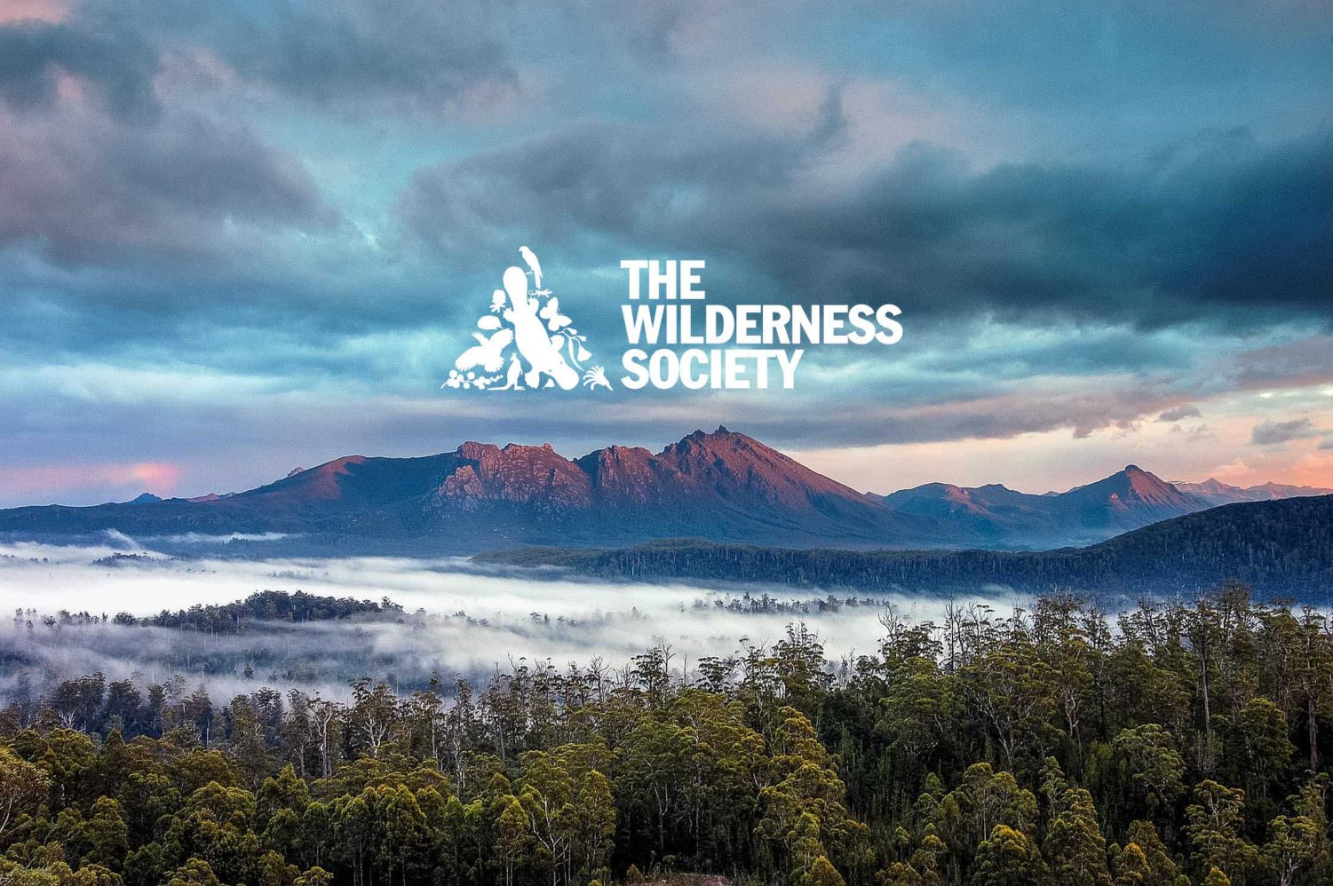 Find the Wilderness Society at the Eco Expo